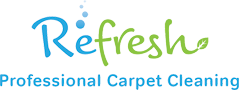 Carpet Cleaner Lancaster