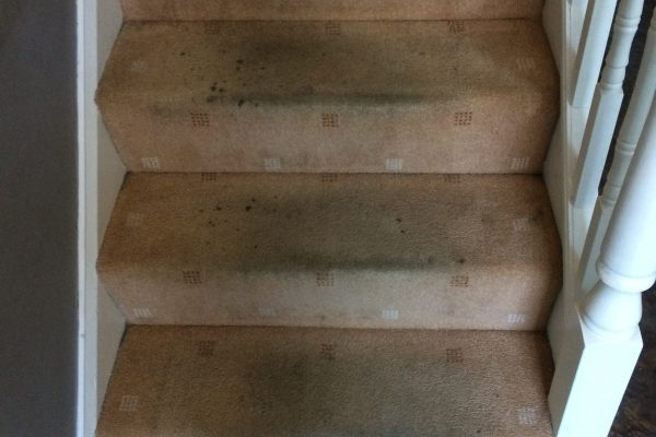 Dirty stairs Morecambe before cleaning
